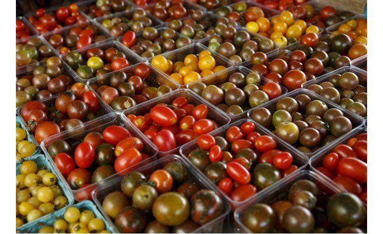 Estudio: los tomates pierden sabor en el refrigerador