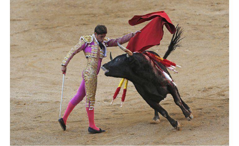 Máximo tribunal anula la veda catalana a corridas de toros