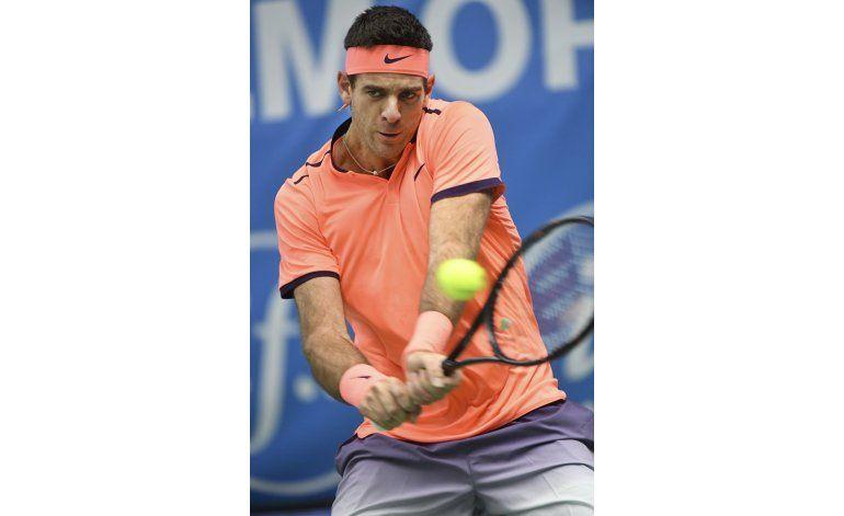 Del Potro avanza a su primera final de la ATP desde 2014