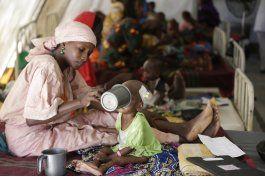nigeria ofrece ayuda a viudas de victimas de boko haram