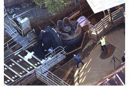 australia: 4 muertos en un accidente en parque tematico