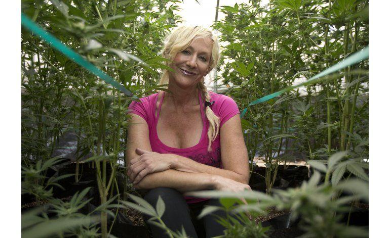 California: Legalización de marihuana, dilema para granjeros