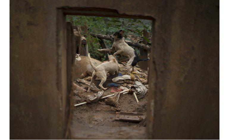 Valle en Brasil aún no se recupera de inundación minera