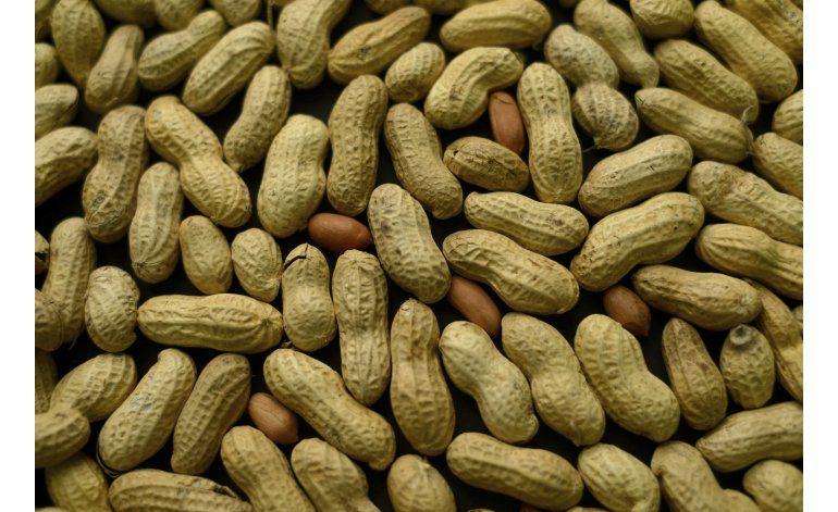 Estudio: Parche ayuda a niños con alergia al maní