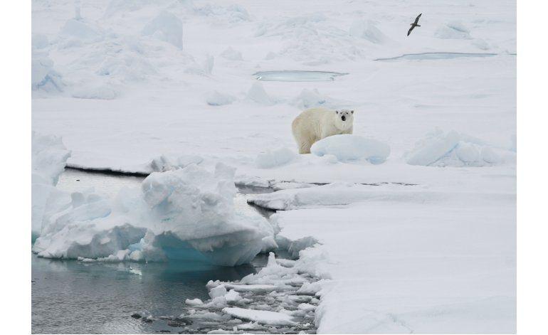Aumenta la temperatura en archipiélago ártico de Noruega
