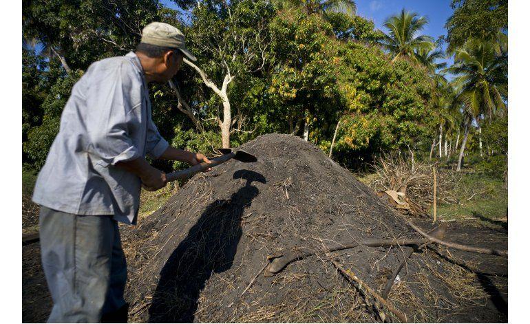 Comercio entre EEUU-Cuba comenzará con carbón artesanal