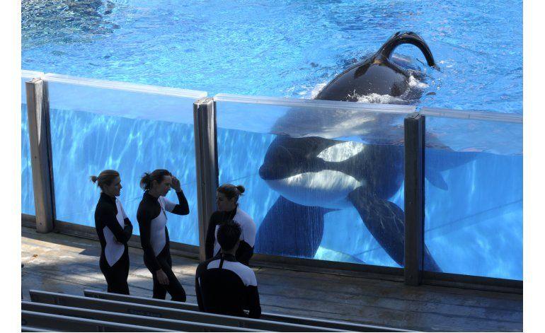 Muere la orca Tilikum de SeaWorld que mató a entrenadora