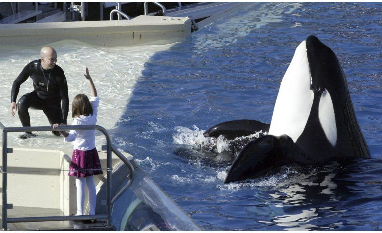 Parque SeaWorld San Diego pondrá fin a espectáculo de orcas
