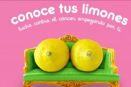 los limones que ayudan a entender las senales del cancer de mama