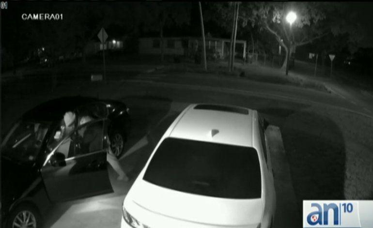 Semana de robos dentro de vehículos en Miami