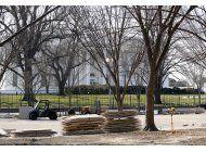 un mes de la presidencia de trump: agitacion y tuits