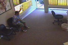 captado en camara: ladron se robo al menos unos 20 lentes de una optica en hollywood