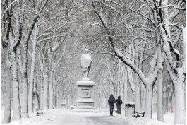 miles de vuelos cancelados por tormenta invernal