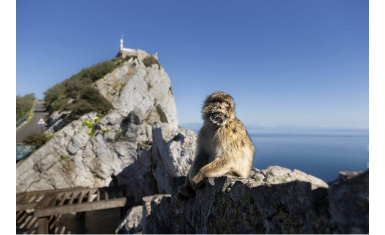 Gibraltar afronta el caos del Brexit contra su voluntad