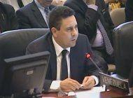 pierde la diplomacia el vicecanciller venezolano durante la reciente sesion de la oea
