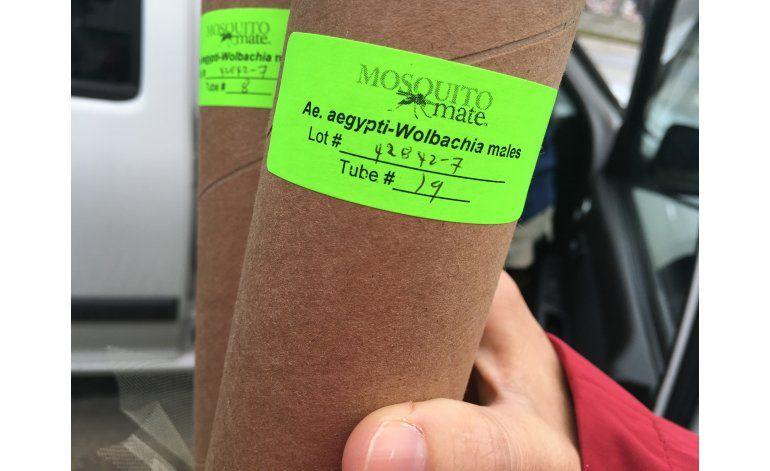Corrección a despacho: FLORIDA-ZIKA-MOSQUITOS TRANSGENICOS