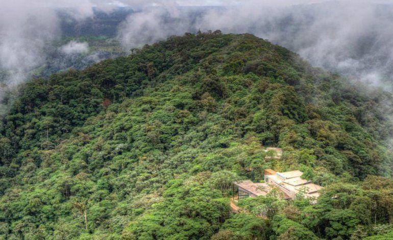 Mashpi Lodge, el hotel de lujo en Ecuador que logró salvar uno de los bosques tropicales más bellos y diversos del planeta