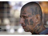el azote de las pandillas llega a suburbios de ny