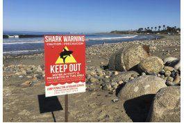 tiburon ataca a mujer en playa del sur de california