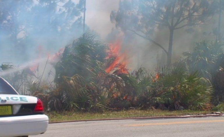 Voraz incendio forestal afecta zona residencial y comercial de Miami Dade