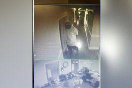 captado en camara: hombre se roba computadoras de una oficina