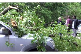 un potente tormenta deja 14 muertos en moscu