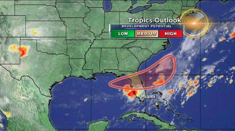 La tormenta tropical Emily se aproxima a la costa oeste de Florida ...