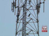 asi fue el dramatico rescate de un hombre de 51 anos que subio a una torre de comunicaciones en hialeah