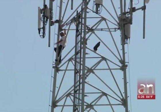 Así fue el dramático rescate de un hombre de 51 años que subió a una torre de comunicaciones en Hialeah