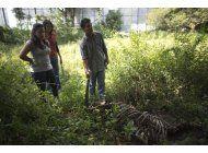 en medio de la crisis, venezolanos comen carne de caballo