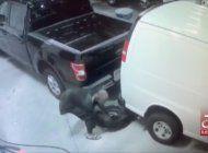 policia de miami tras la pista de ladrones de costosas gomas de camiones y camionetas comerciales