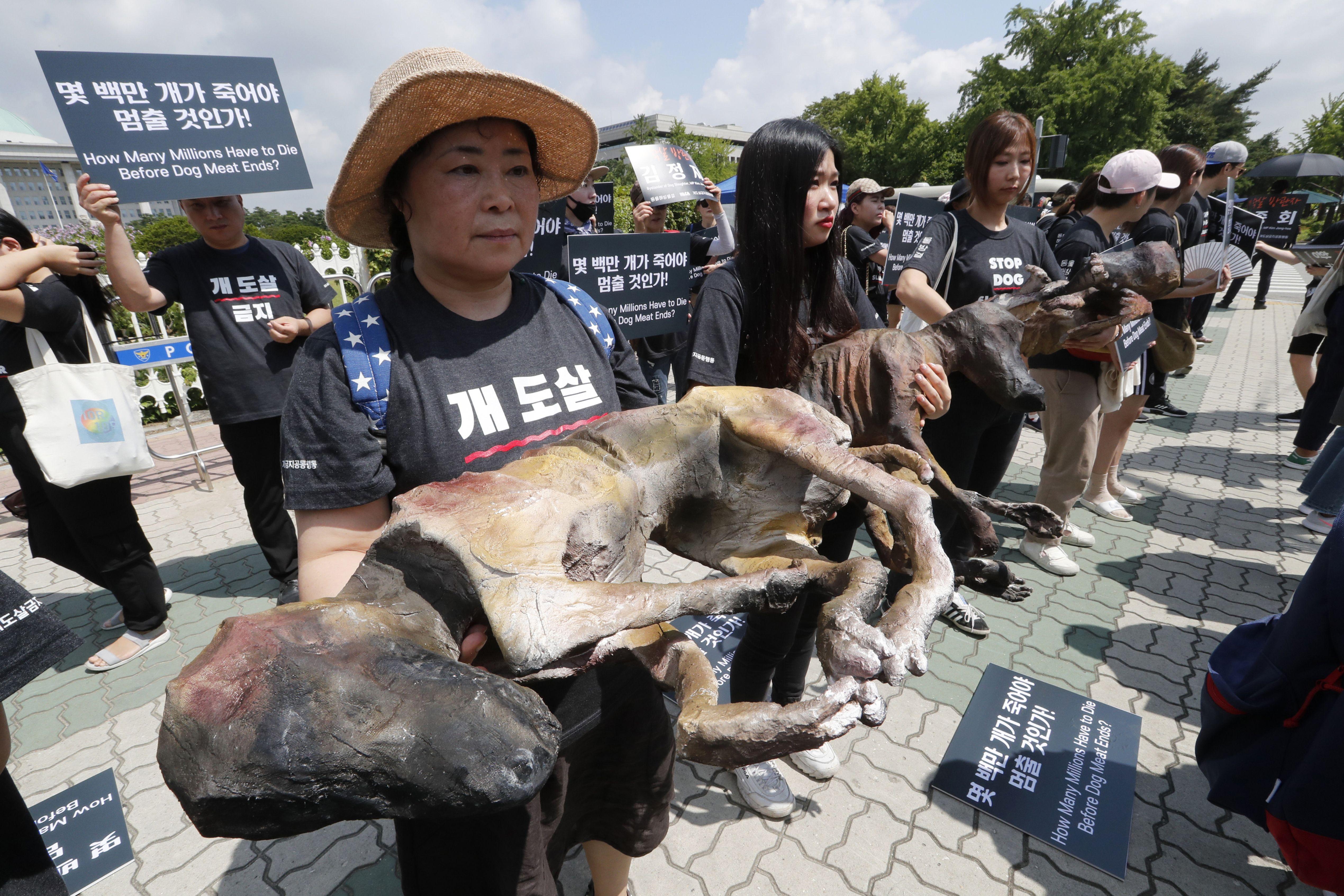 Kim Basinger protesta consumo de carne de perro en Surcorea