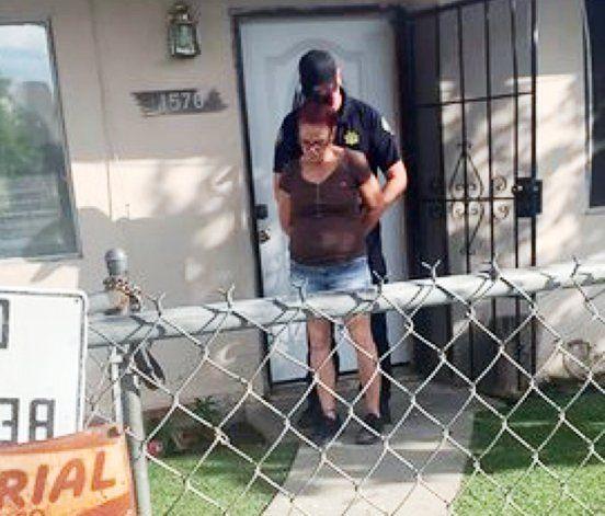 EEUU: Mujer irá a la cárcel por tirar cachorros a la basura