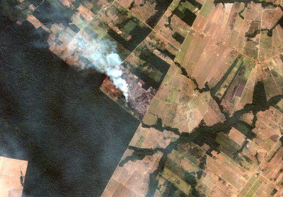 Bolsonaro podría mandar al ejército para contener incendios