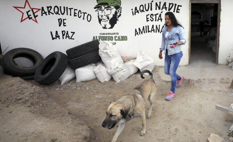 Coincidencia entre colombianos divididos: no más violencia