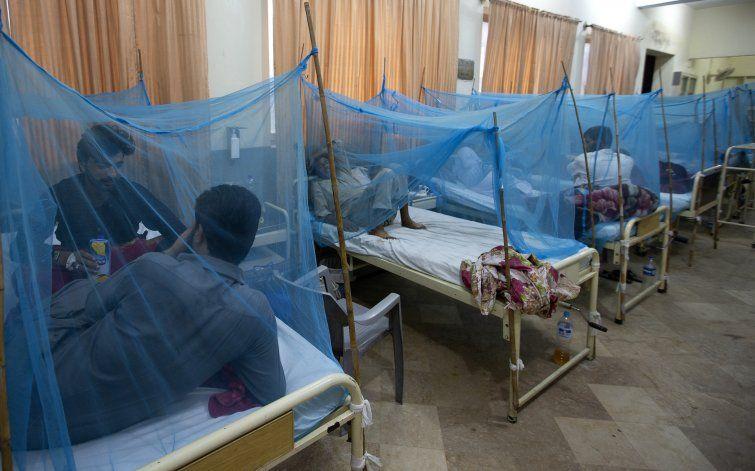 Pakistán combate uno de los peores brotes de dengue