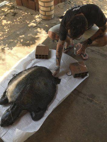 Bolsonaro pide investigar manchas de crudo frente a playas