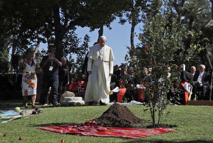 El papa pide medidas valientes para proteger la Amazonia