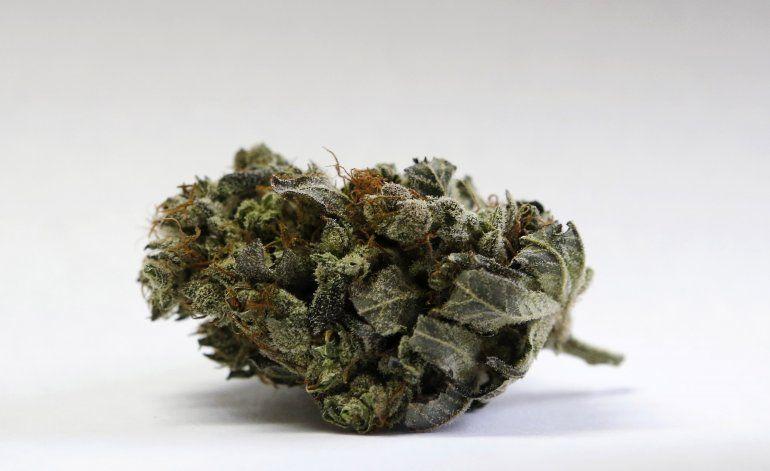 Maine podría comenzar venta legal de marihuana en 2020