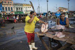 samba, fruta y peces cautivan en mercado amazonico brasileno