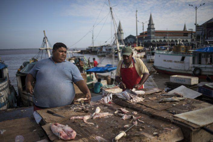 Samba, fruta y peces cautivan en mercado amazónico brasileño