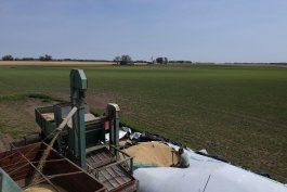 retorno del kirchnerismo alarma a sector agricola argentino