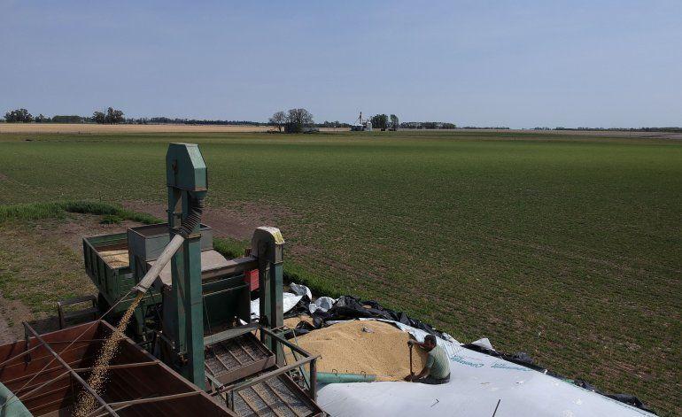 Retorno del kirchnerismo alarma a sector agrícola argentino