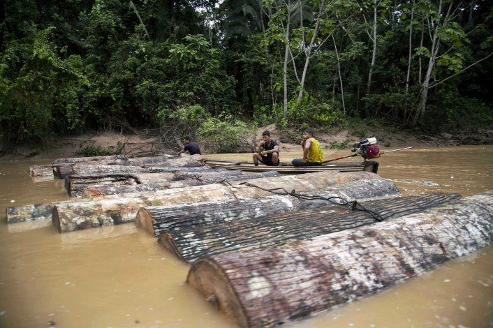 Perú acusa a madereros por crimen de ambientalistas
