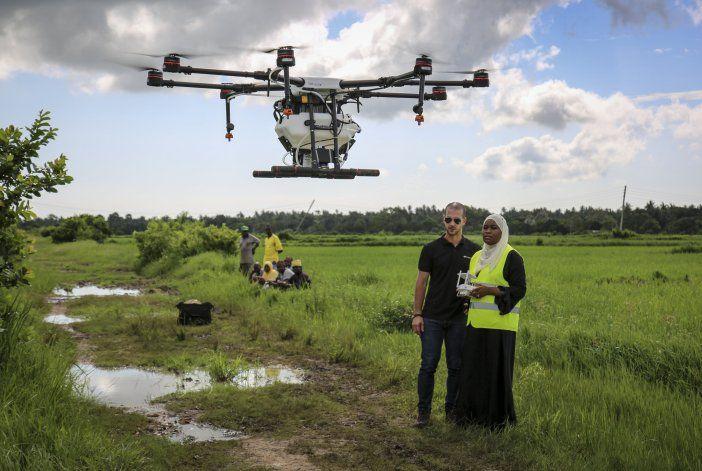 Zanzíbar fumiga arrozales con drones para combatir malaria