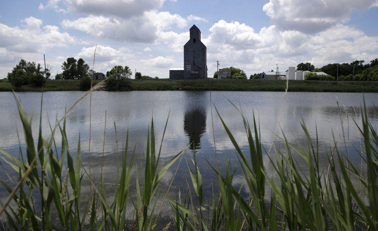 La importancia de revivir estanques desaparecidos