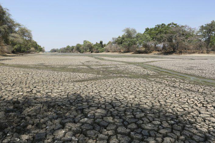 Sequía afecta el sur de África y millones enfrentan hambruna
