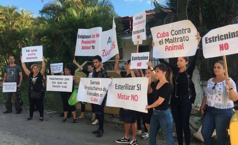 Cierre de Zoonosis, activistas cubanos protestan frente al Centro de Observación Animal