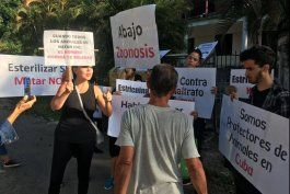 activistas cubanos salvan animales de ser sacrificados