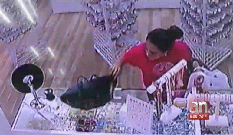 Captada en cámara mujer robando billetera en el Mall de las Américas